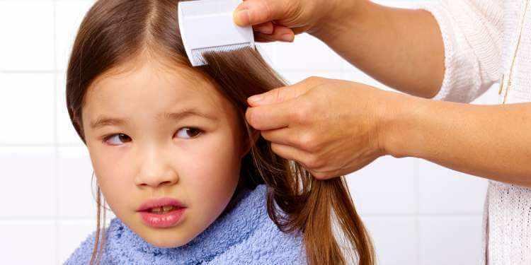 Como eliminar los piojos en los niños